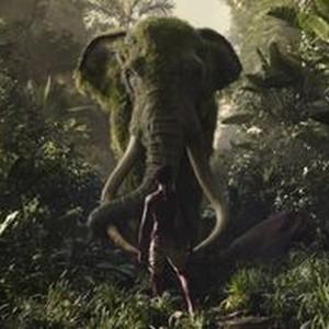 the jungle book torrentking