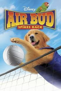 Air Bud 5 - Spikes Back