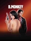 B. Monkey