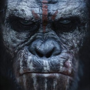 Dawn Of The Planet Of The Apes Movie Quotes Rotten Tomatoes