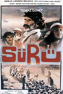 Sürü (The Herd)