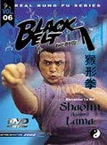 Shaolin Against Lama