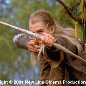 The Lord of the Rings: The Fellowship of the Ring (2001