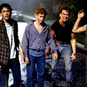 the outsiders 1983 rotten tomatoes