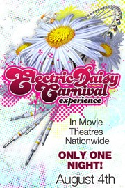 The Electric Daisy Carnival Event