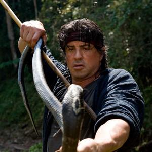 Rambo (Rambo IV) (2008) - Rotten Tomatoes