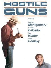 Hostile Guns