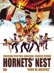 Hornets' Nest
