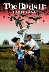 The Birds II: Land's End