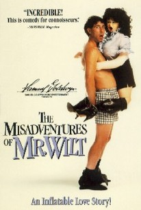 The Misadventures of Mr. Wilt