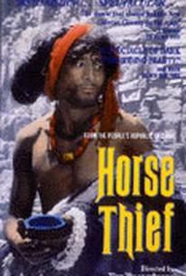 Dao ma zei (The Horse Thief)