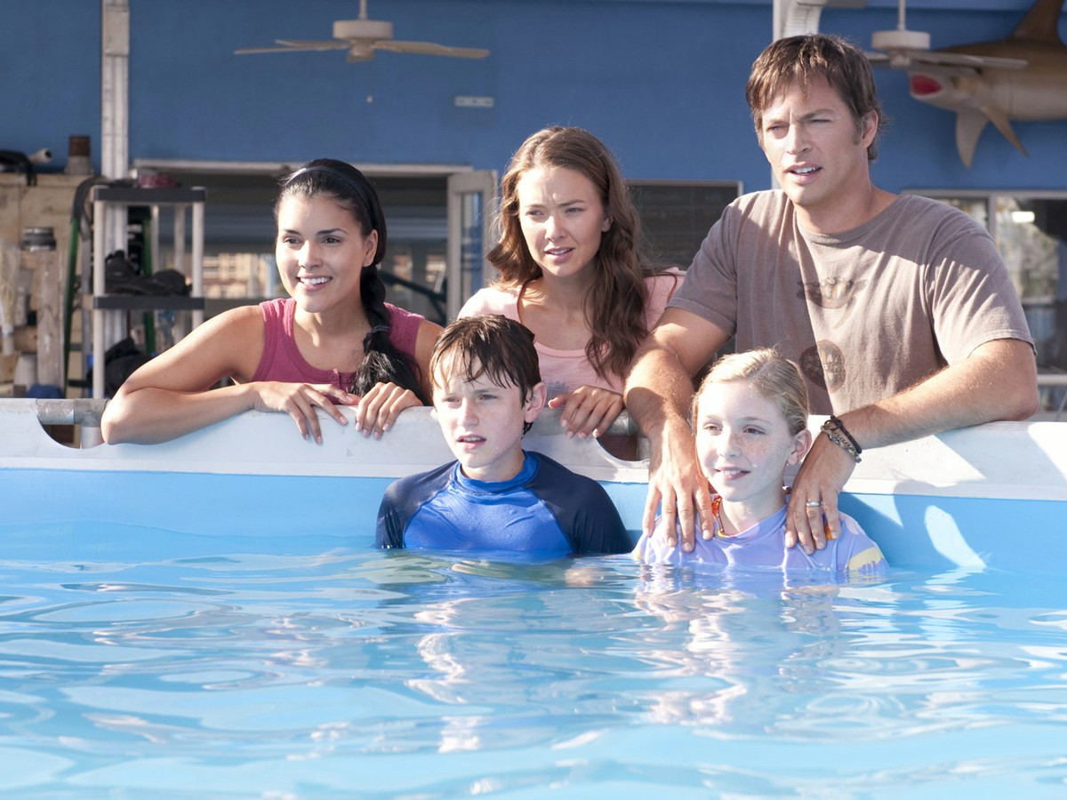 dolphin tale movie in hindi free download
