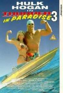 Thunder in Paradise III