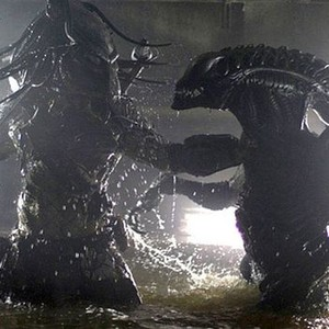 Aliens Vs Predator Requiem Avp 2 2007 Rotten Tomatoes