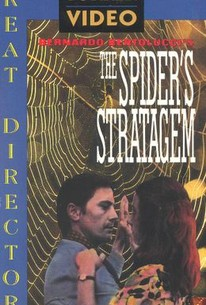 The Spider's Stratagem
