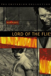 lord of the flies movie review When i was in 10th grade, i read the novel lord of the flies in english class, and right after that, we watched this movie i really loved the novel so i was excited.