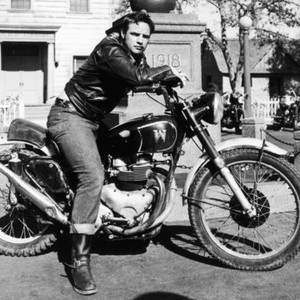 The Wild One (1954) - Rotten Tomatoes 04e22028d57