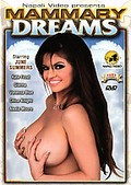 Mammary Dreams: Top-Heavy Angels