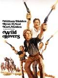 Wild Rovers (Dos Vaqueros Errantes)