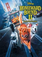 Homeward Bound II - Lost in San Francisco