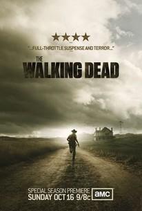 the walking dead season 2 torrentz2