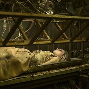 The Curse of Sleeping Beauty (2016) Movie Photos and