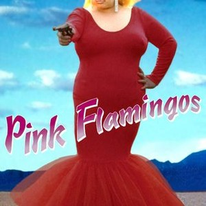 flamingo the pink
