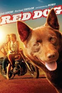 Red Dog