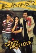 Cheotsarang sasu gwolgidaehoe (Crazy First Love)