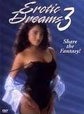 Erotic Dreams #3