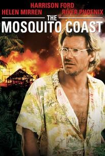 Mosquito Coast Stream