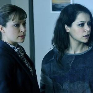 Orphan Black: Season 2, Episode 7, Alison (Tatiany Maslany) and Sarah (Tatiana Maslany)