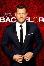 The Bachelor: Season 23