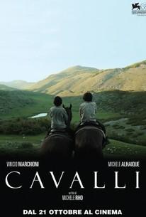 Cavalli (Horses)