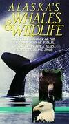 Alaska's Whales and Wildlife