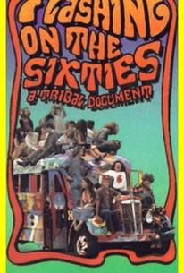 Flashing on the Sixties