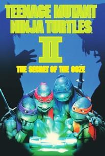 Teenage Mutant Ninja Turtles II - The Secret of the Ooze
