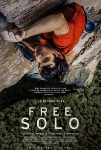 Free Solo 2018 Rotten Tomatoes