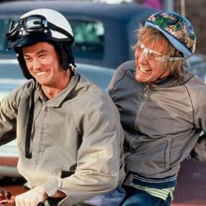 Dumb And Dumber 1994 Rotten Tomatoes