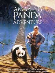 The Amazing Panda Adventure