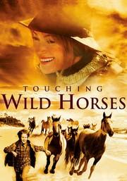 Touching Wild Horses