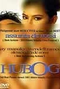 Hubog