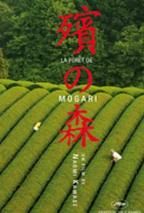The Mourning Forest (Mogari no mori)