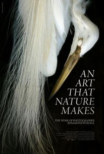 An Art That Nature Makes: The Work of Rosamond Purcell
