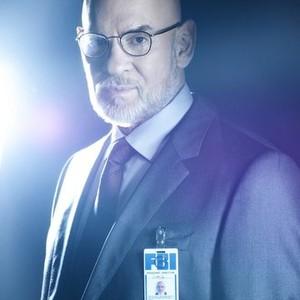 Mitch Pileggi as Asst. Dir. Walter Skinner
