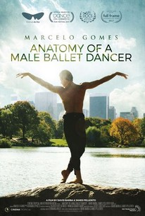 Anatomy of a Male Ballet Dancer (2018) - Rotten Tomatoes