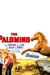 The Palomino (Hills of the Brave)