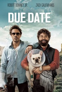 Due Date 2010 Rotten Tomatoes