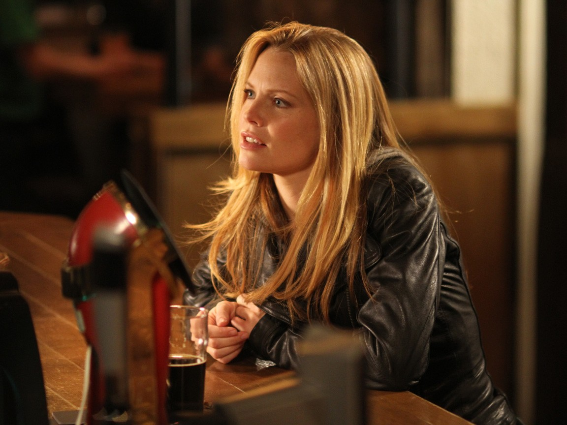 brothers and sisters season 4 episode 13