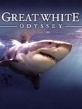Great White Odyssey